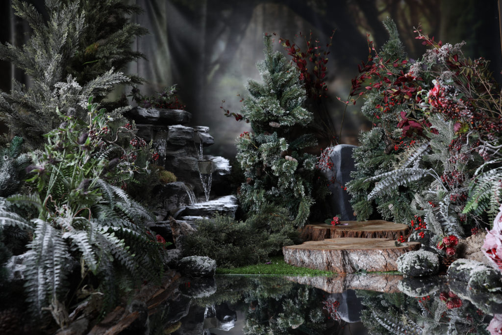 Winter Scenes in the Enchanted Forest