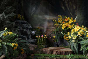 Spring Scenes in the Enchanted Forest
