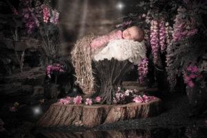 enchanted forest newborn