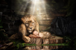 Leo protected by a Lion Newborn Joe Laws Photography