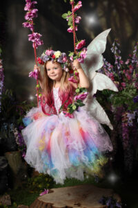 enchanted fairies fairy enchanted forest